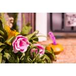 """Румбокс Калитка в волшебный сад Diy House  (""""Калитка в цветах"""")"""